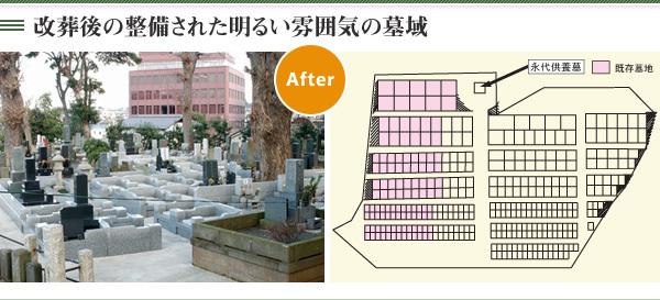 改葬後の整備された明るい雰囲気の墓域